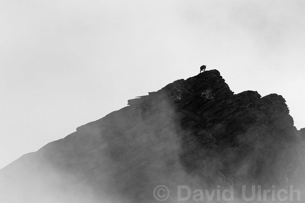 Last Climbing